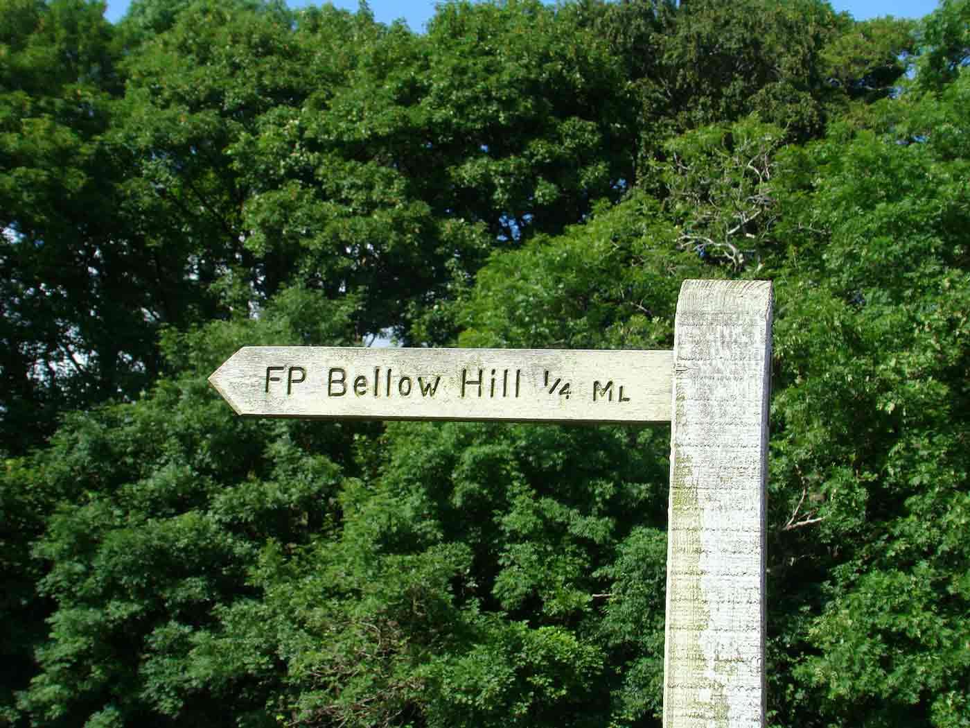 Bellow Hill